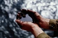 Опасения ученых по поводу утечки нефти в Мексиканском заливе усиливаются