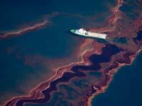 Компании заплатят за разлив нефтепродуктов на море
