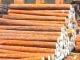Россия задерживает увеличение вывозных пошлин на древесину